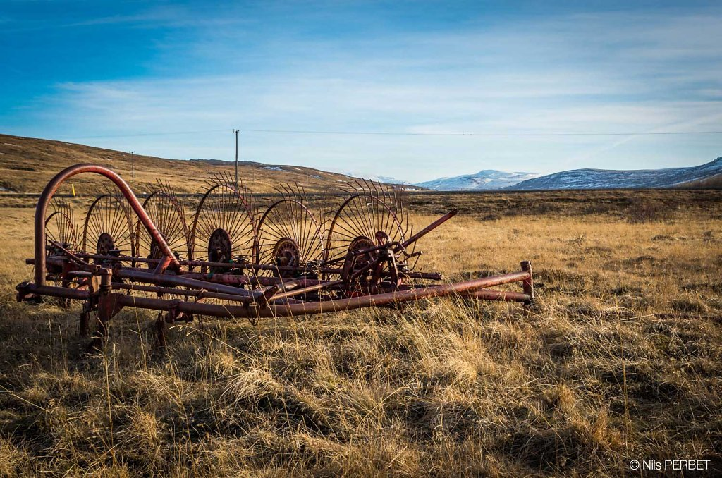 Old reaper in Iceland