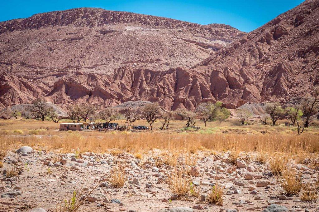 The house in the desert